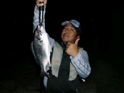 2008.8.9淀川キビレ
