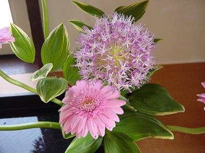 20060505姪っ子のお花②