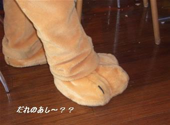 プルートの足