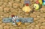 gottoherumu2.jpg