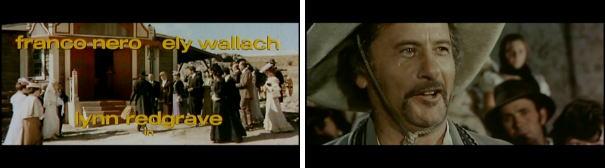 EliWallch-2.jpg