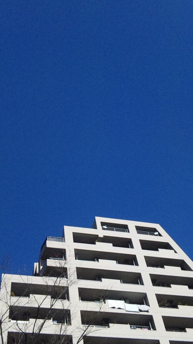 BLUE SKY_20110127