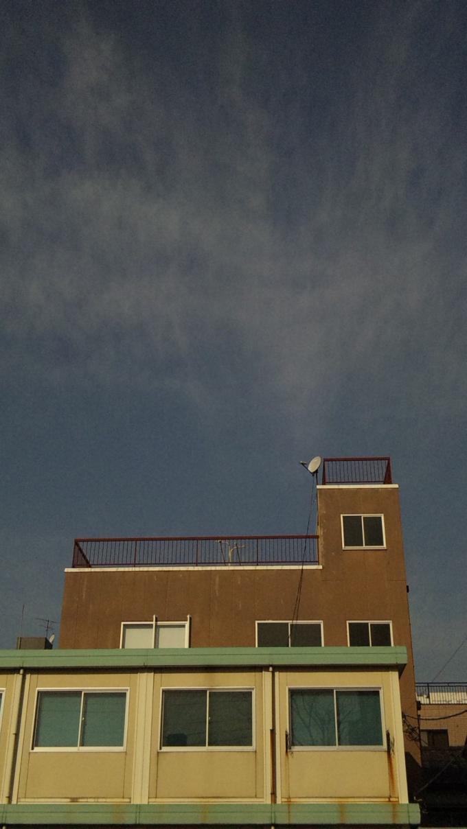 SKY_20110129