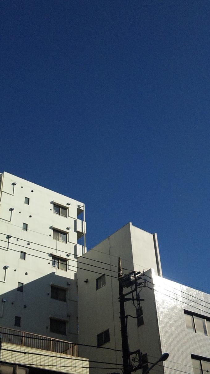 BLUE SKY_20110131