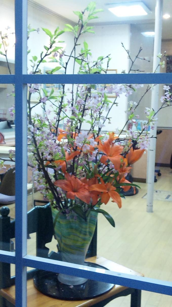 Flowers_20110202