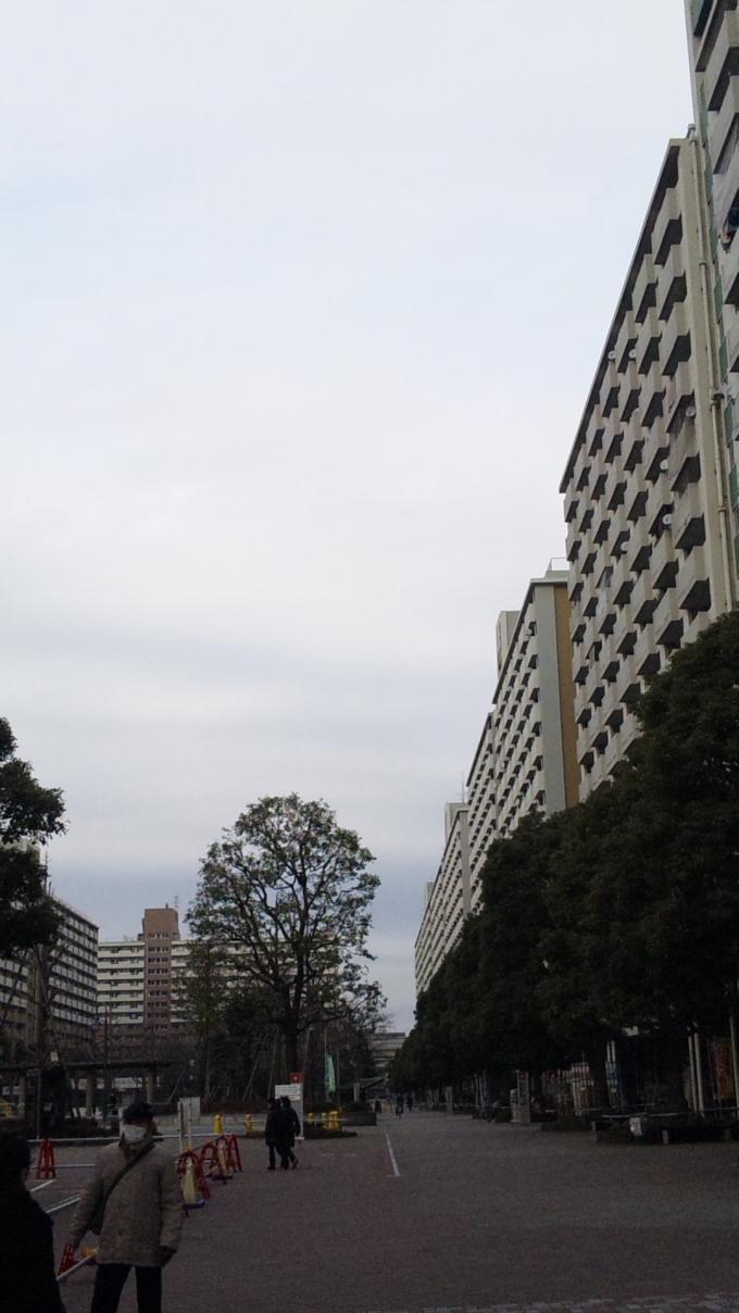 DANCHI_20110208