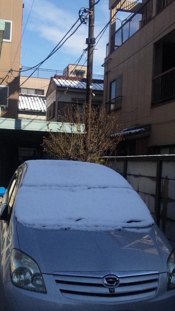 SNOW_20110215