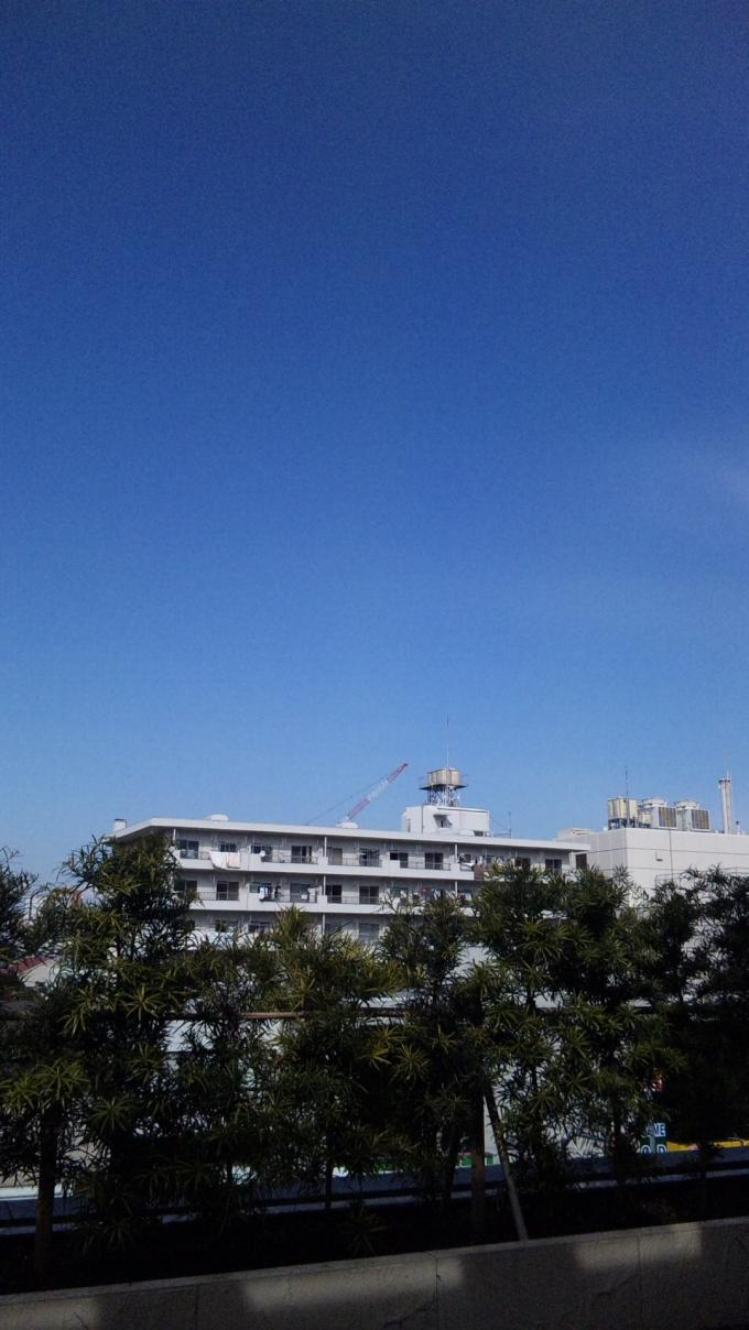 BLUE SKY_20110225