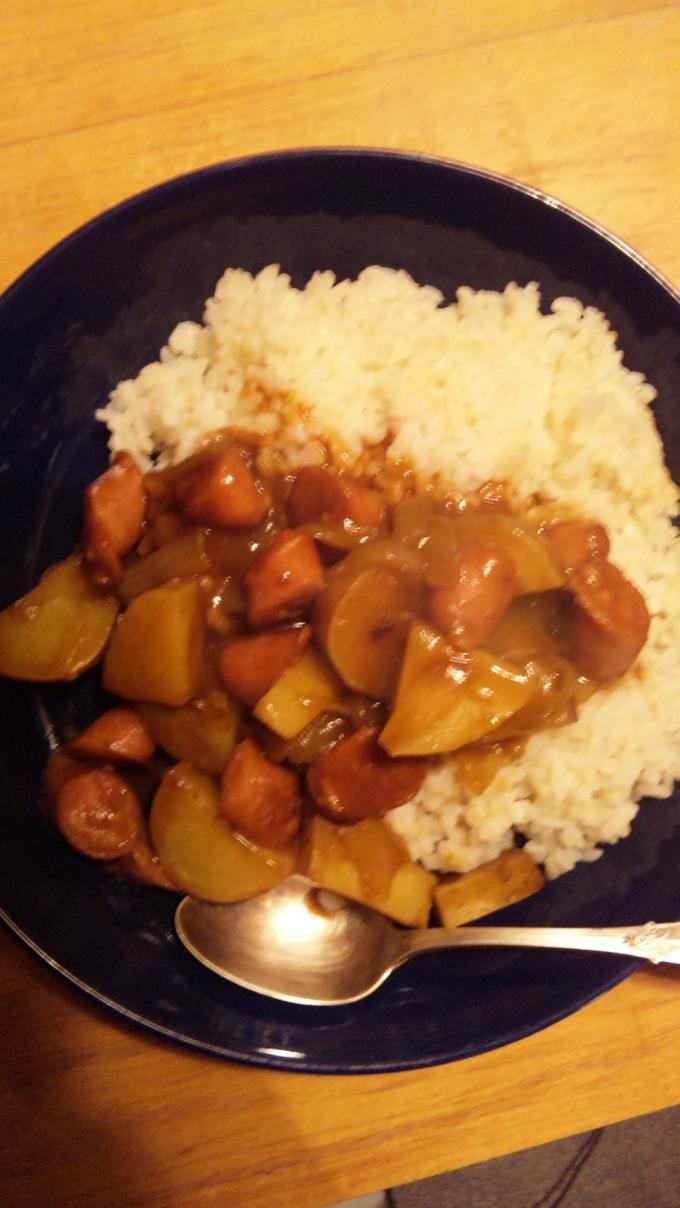 CURRY_20110304
