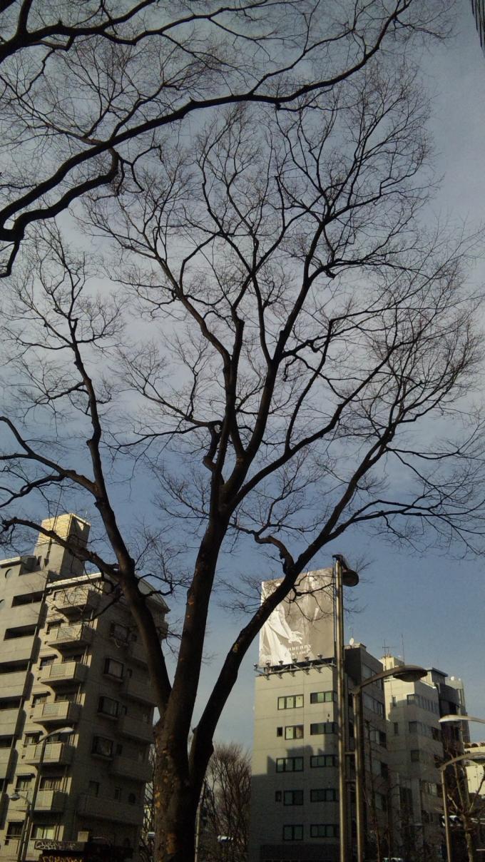 SKY IN HARAJUKU_20110311