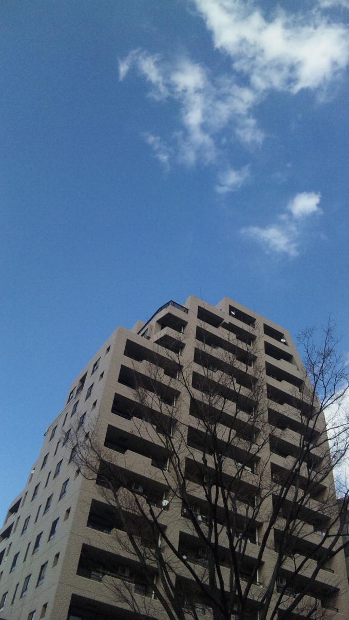 BLUE SKY_20110317