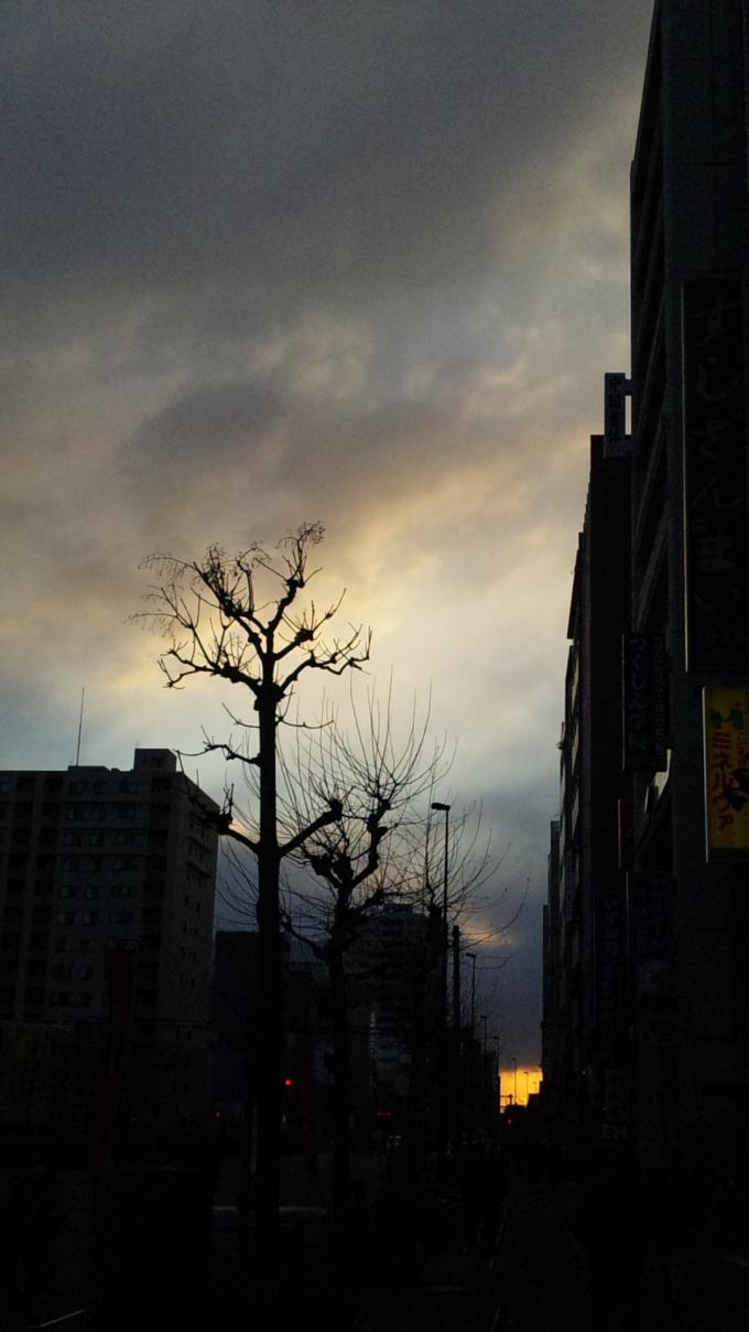 SUN SET_20110317