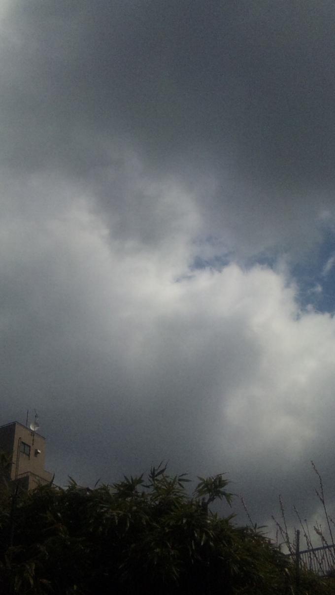 MORNING SKY_20110323