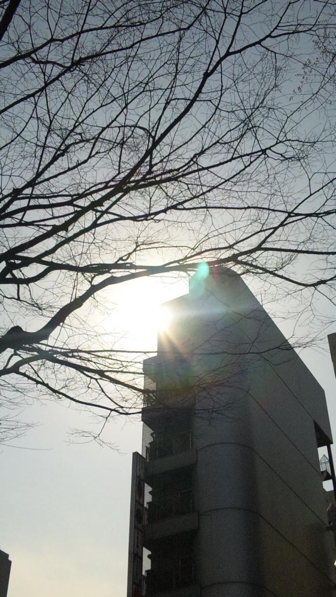 SUN_20110325