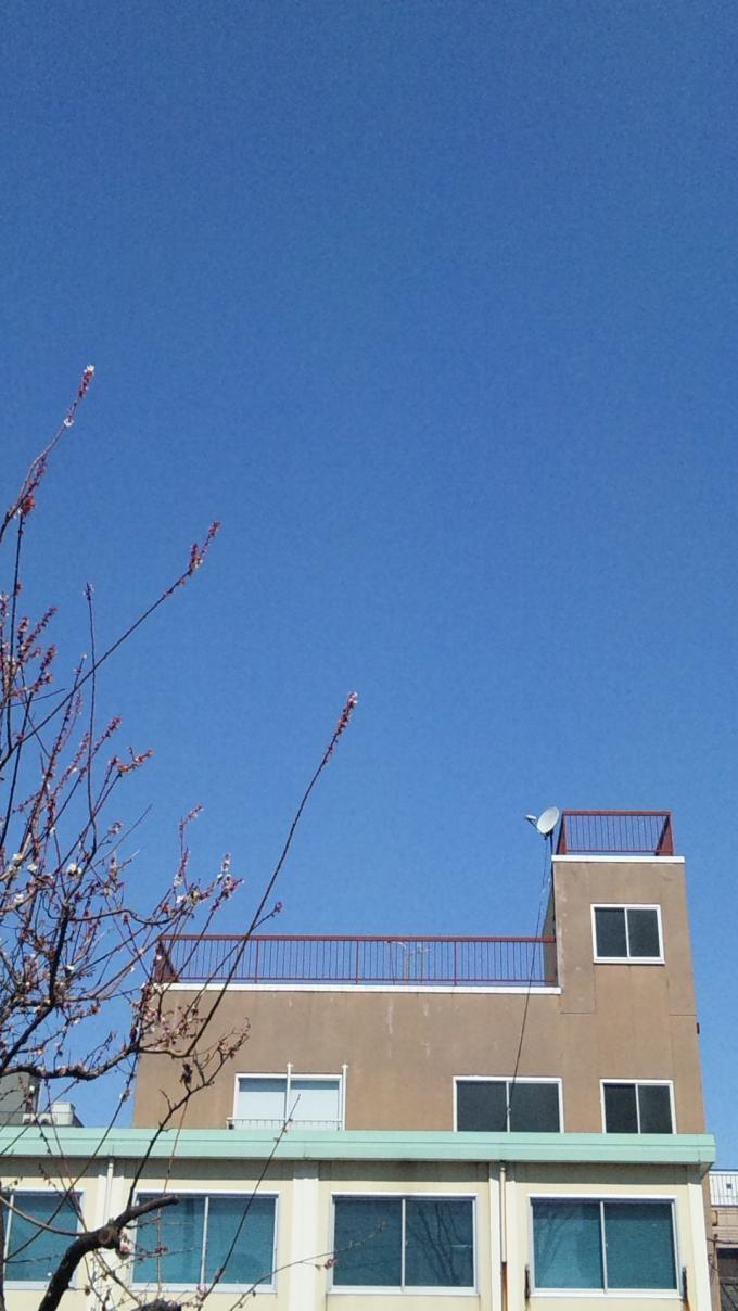 BLUE SKY_20110326