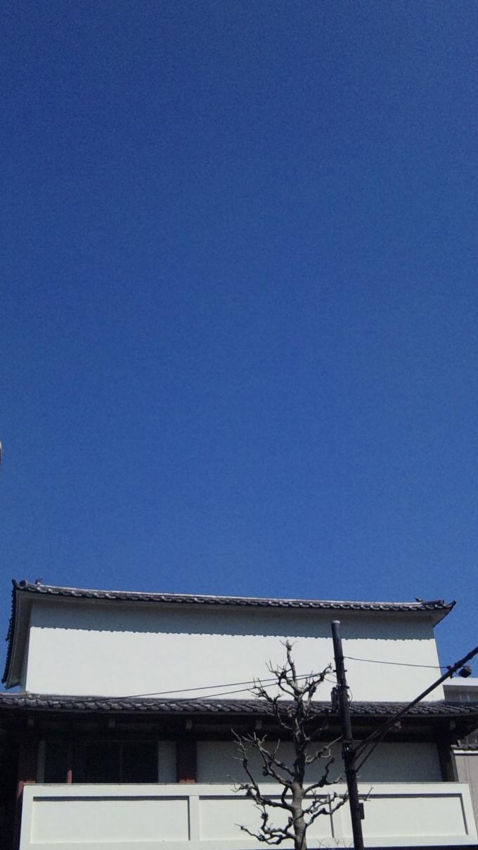 BLUE SKY_20110328