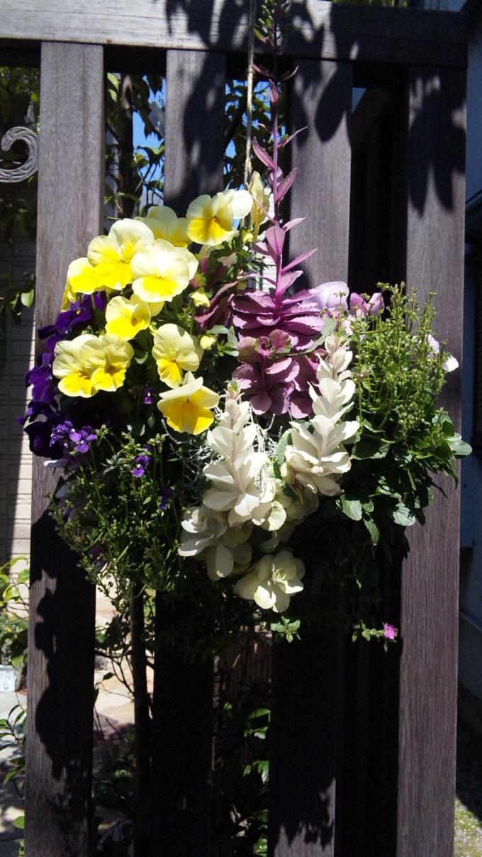 Flowers_20110328
