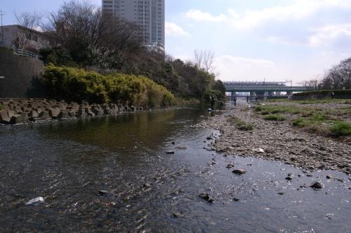 野川_convert_20110419230529