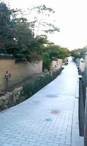 20081105220024.jpg
