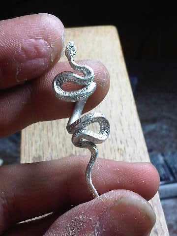 snakemaster3.jpg