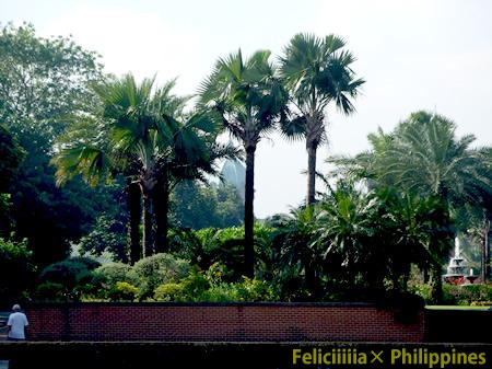 philippines016.jpg