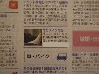 2008_0809ぷーすけ0015