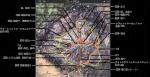 鉱山マップ説明図ルート付き