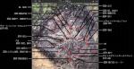鉱山マップ説明図