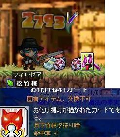 Maple0221.jpg