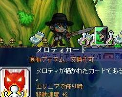 Maple0272.jpg