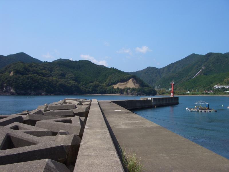 三浦漁港1