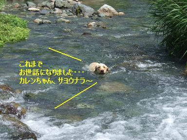 DSCF0133.jpg