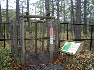 小田代ヶ原 鹿防護柵