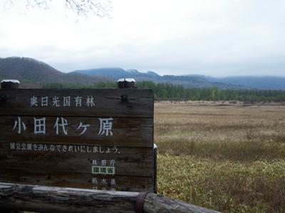 小田代ヶ原