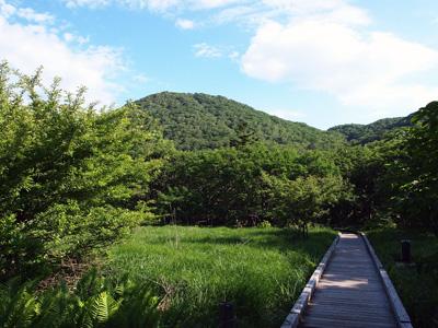 覚満淵への木道