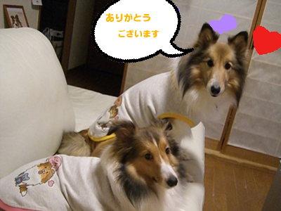似顔絵Tシャツ 2ショット