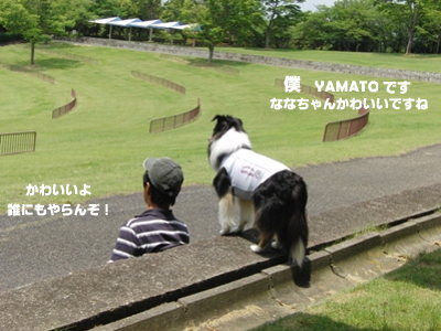 BBQオフ会 YAMATOくん&nanapapaさん