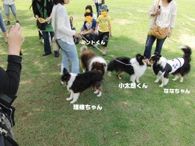 BBQオフ会 理緒ちゃん&ミントくん ななちゃん&小太朗くん