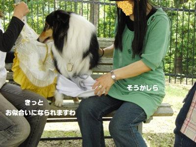 BBQオフ会  ヤマ美ちゃん 1