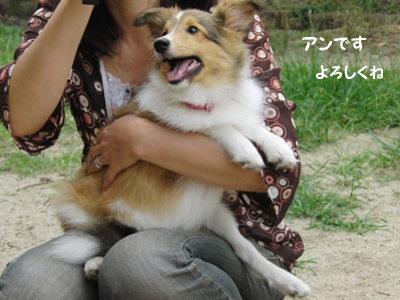 21.7.5 アンちゃん かわえー