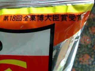 味カレー袋(拡大1)090708