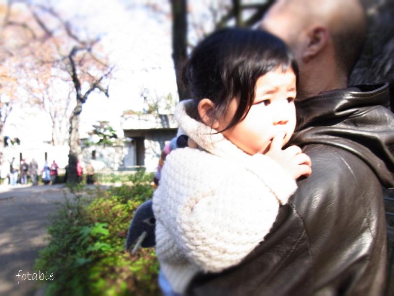 photo20101127_3.jpg