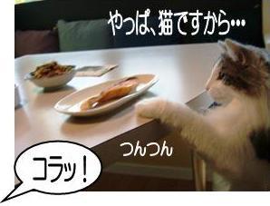 猫噺1-4