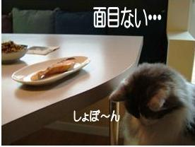 猫噺1-5