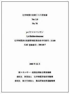 初期リスク評価書(潤・6)