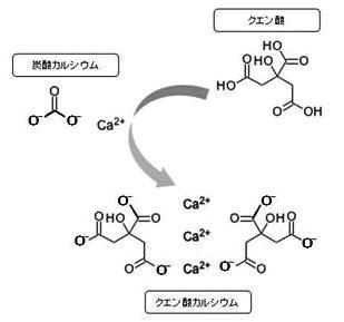 クエン酸カルシウム