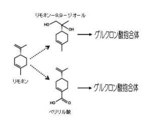 リモネン代謝