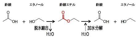 エステル化合物