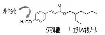 2EH-5 メトキシケイヒ酸エチルヘキシル