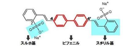 蛍光増白剤-FWA-5